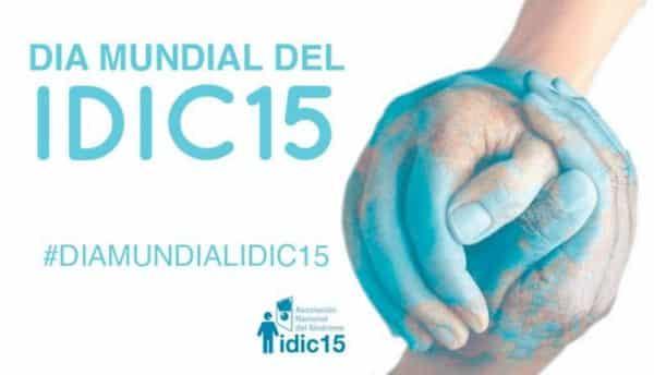 idic15
