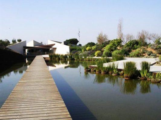 El Jardín Botánico de Barcelona - lugares