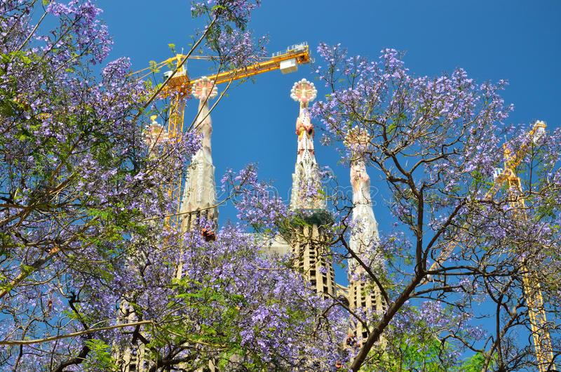 Viajar a Barcelona en primavera - novedades