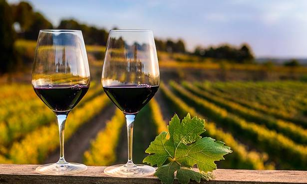 Vinos y viñedos en Barcelona: bodega y curso de cata de vinos - lugares, bar-y-restaurantes