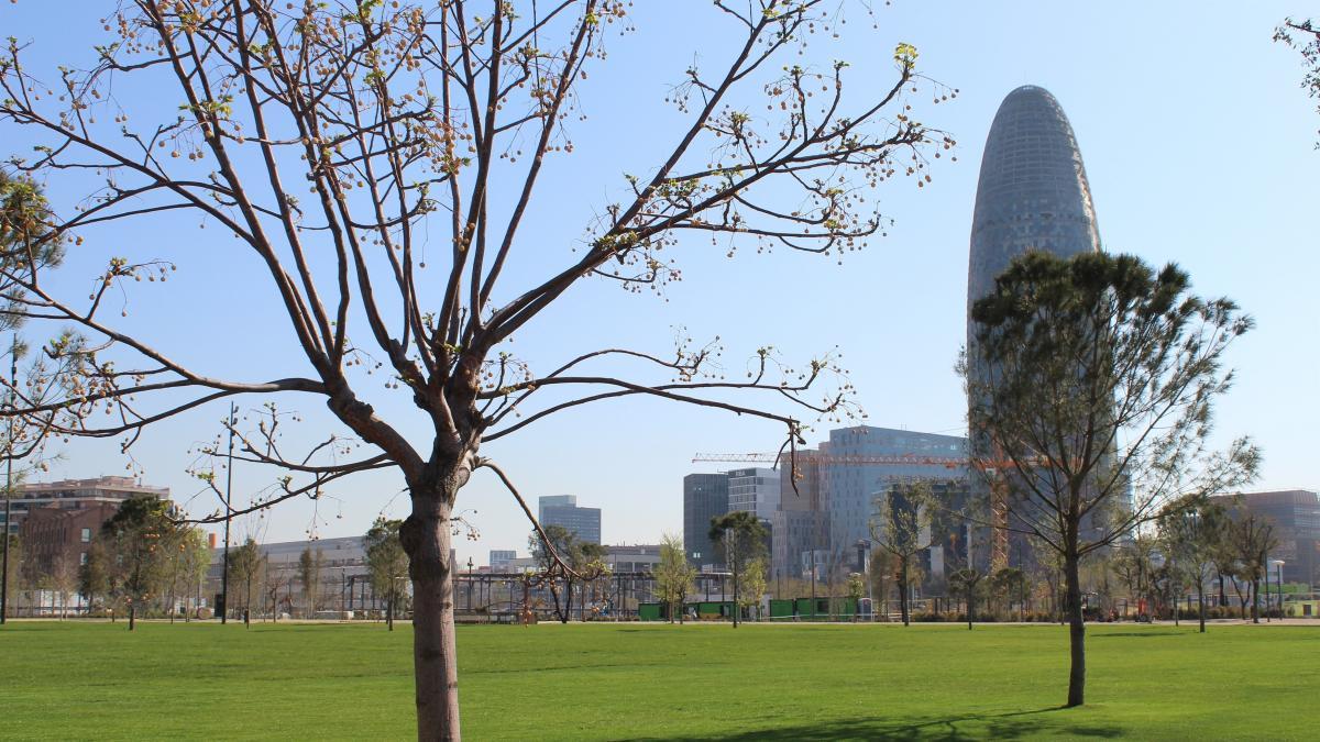 Barcelona tendrá 18,6 hectáreas más de verde en 2023 - novedades, lugares, destacado